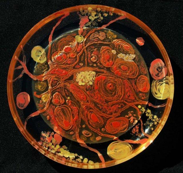 Creatii stiintifice: Arta cu microbi si bacterii - Poza 10