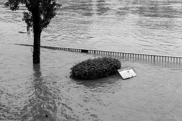 Parisul sub ape, in fotografii alb-negru - Poza 12