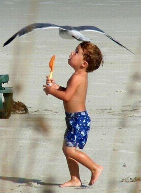 Momente haioase de pe litoral, in imagini savuroase - Poza 16