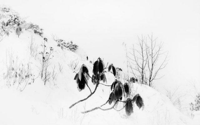 Frumusetea Indiei in alb si negru - Poza 4