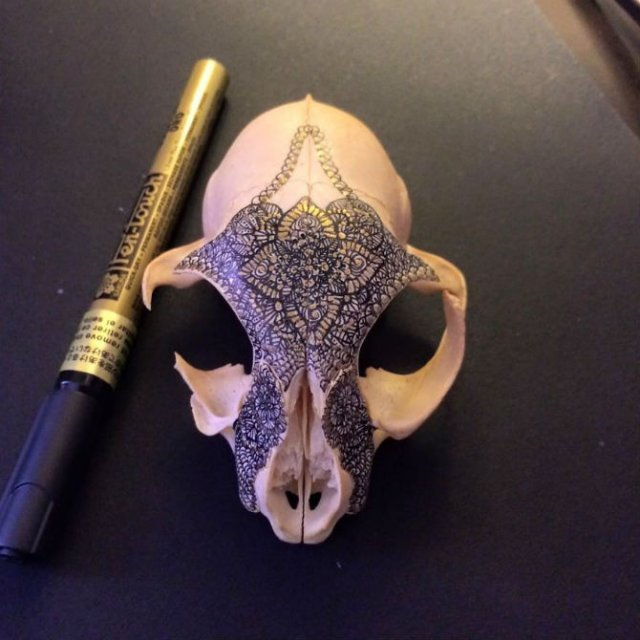 Mandala pe cranii de animale - Poza 10