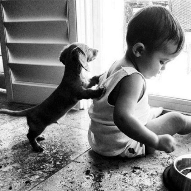 Copii si animale, intr-un pictorial adorabil