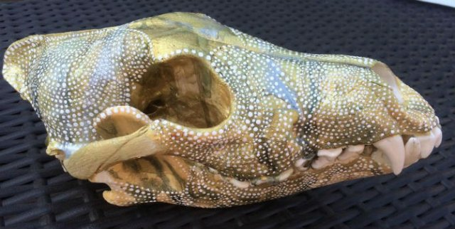Mandala pe cranii de animale - Poza 9