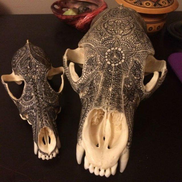 Mandala pe cranii de animale - Poza 8