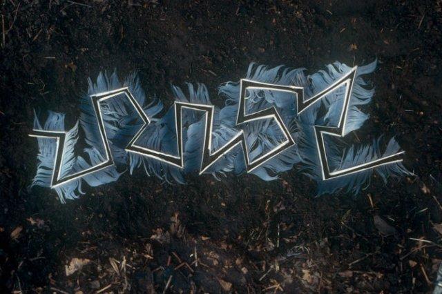 Ansambluri artistice cu resturi din natura - Poza 18