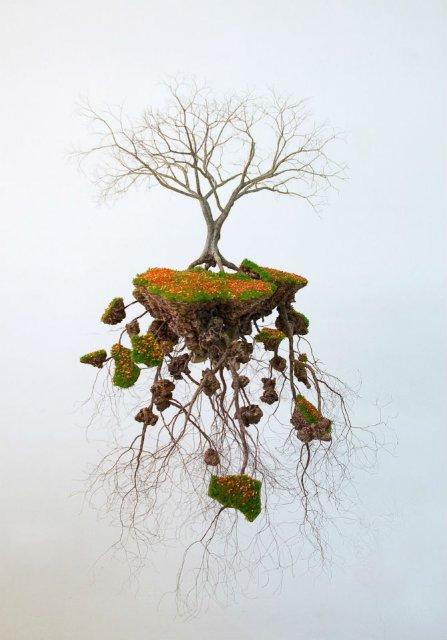 Metafora vizuala a dezradacinarii - Poza 3
