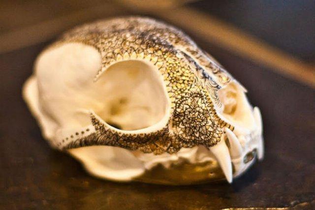 Mandala pe cranii de animale - Poza 3