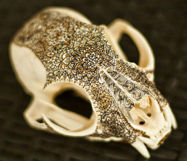 Mandala pe cranii de animale - Poza 1