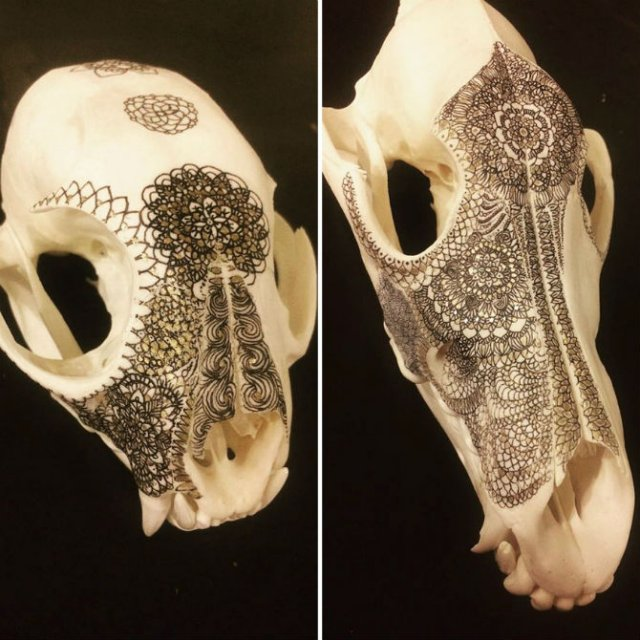 Mandala pe cranii de animale - Poza 6