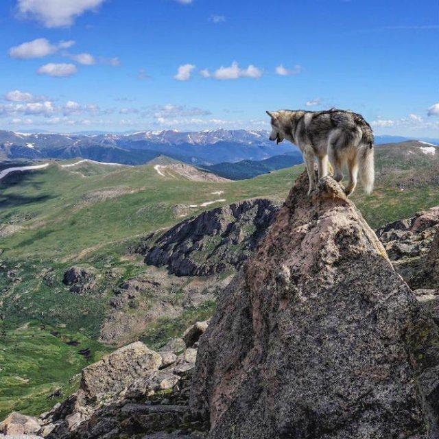 Doi prieteni aventurieri, in explorarea lumii - Poza 13