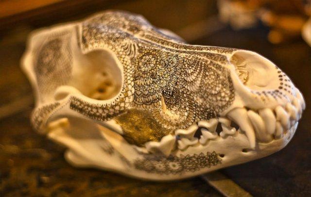 Mandala pe cranii de animale - Poza 5