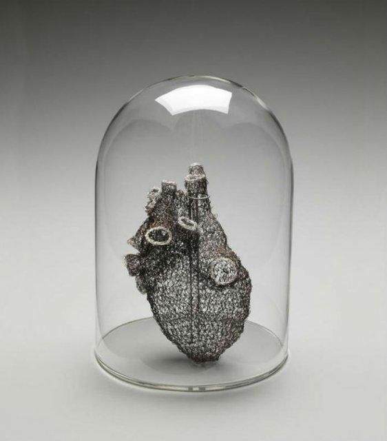 Anatomie crosetata, de Anne Mondro - Poza 1