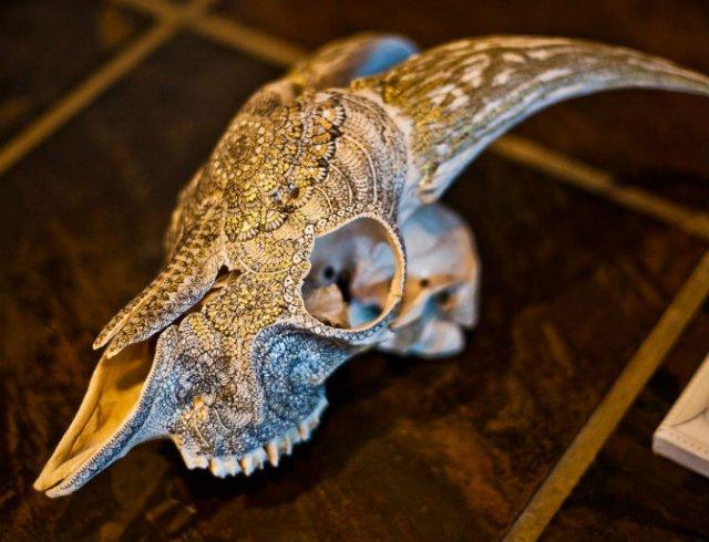 Mandala pe cranii de animale - Poza 4