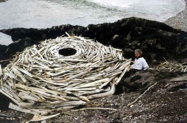 Ansambluri artistice cu resturi din natura - Poza 16