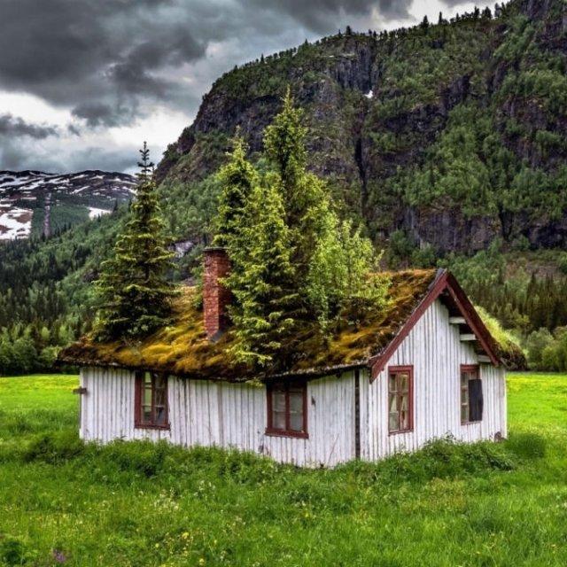 Frumusetea celor mai bizare locuri din lume - Poza 11