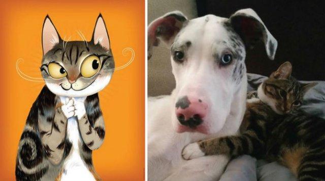 Portrete simpatice cu pisici si caini - Poza 2