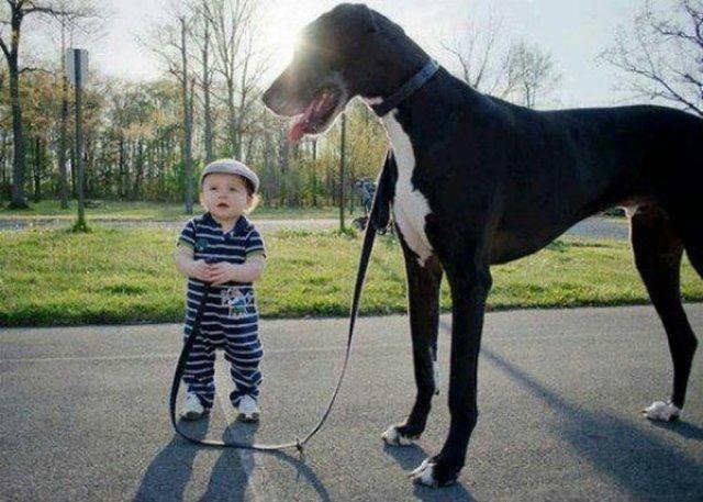Copii si animale, intr-un pictorial adorabil - Poza 3