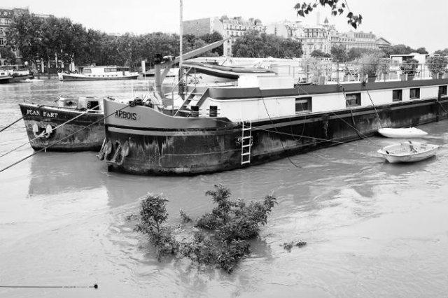 Parisul sub ape, in fotografii alb-negru - Poza 4