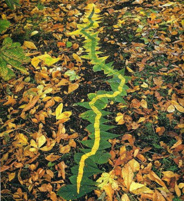 Ansambluri artistice cu resturi din natura - Poza 12