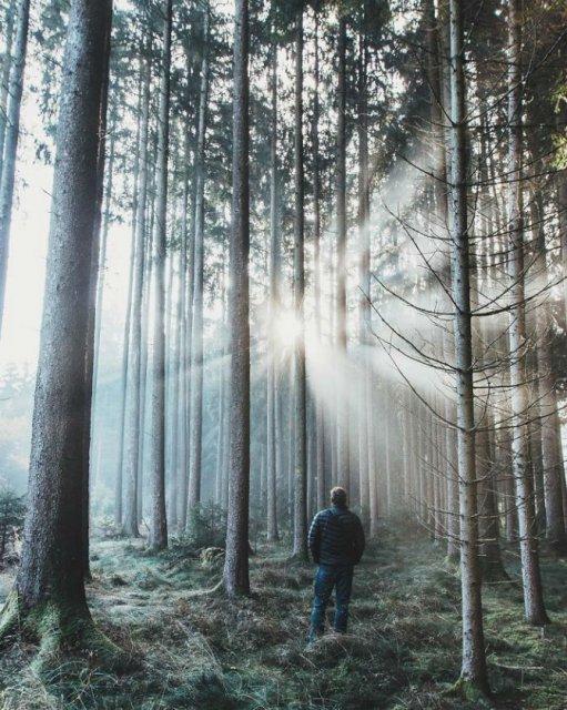 Splendoarea naturii, prin ochii unui tanar - Poza 17