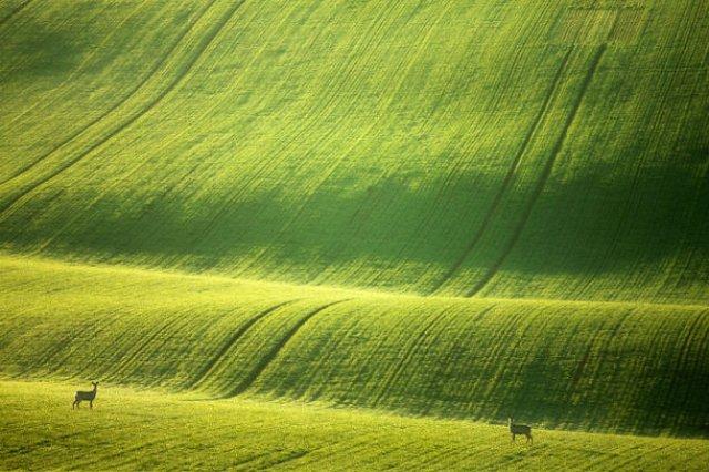 Pe dealurile spectaculoase ale Cehiei - Poza 3