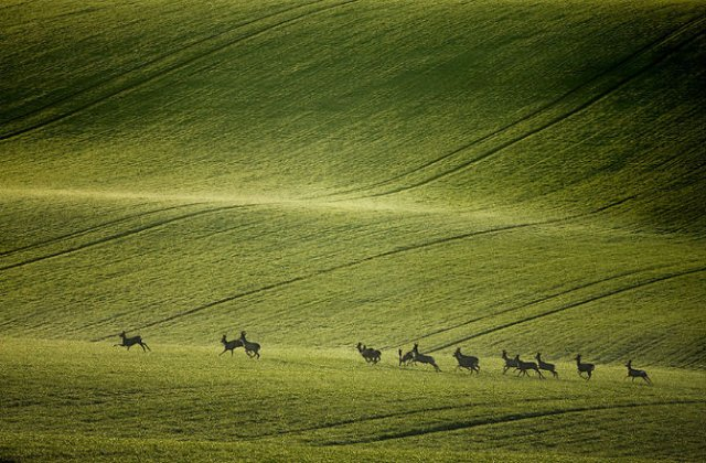 Pe dealurile spectaculoase ale Cehiei - Poza 8