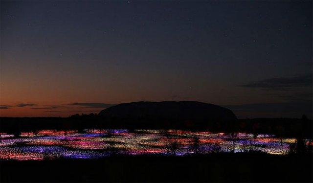 Campul luminii: O experienta luminoasa energizanta - Poza 1