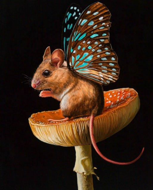 Soricei inaripati, in picturi adorabile - Poza 6