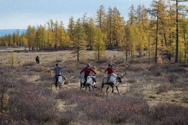 Oameni si reni, in inima Mongoliei - Poza 9