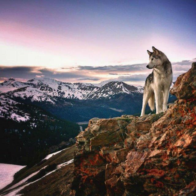 Doi prieteni aventurieri, in explorarea lumii - Poza 2