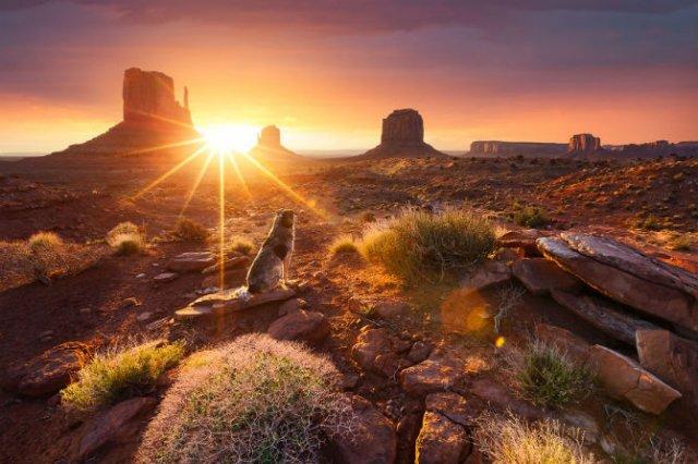 Cele mai frumoase rasarituri de soare - Poza 4