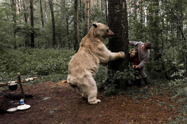 Cel mai simpatic urs, intr-o poveste de familie - Poza 7