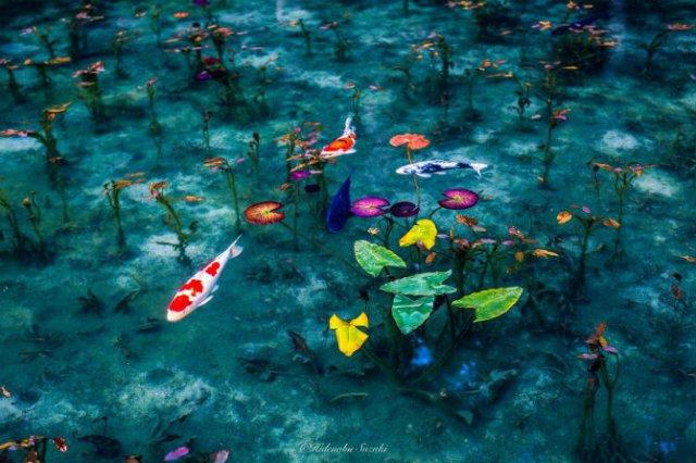 Uimitoarea Japonie, in sezonul ploios - Poza 7