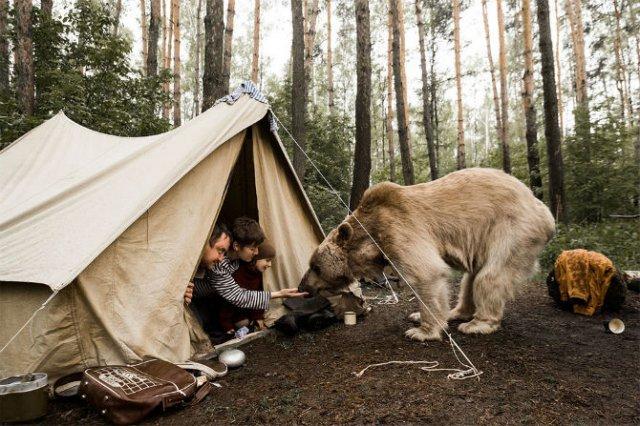 Cel mai simpatic urs, intr-o poveste de familie - Poza 2