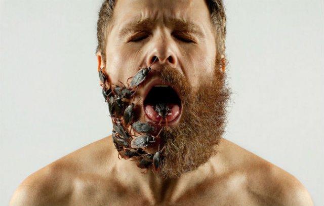Proiectul cu barba: 11 substituenti trasniti pentru parul facial - Poza 1