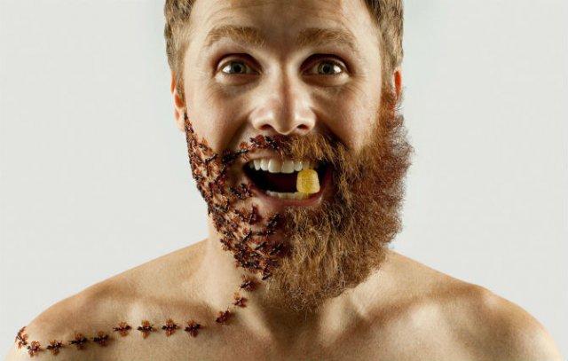 Proiectul cu barba: 11 substituenti trasniti pentru parul facial - Poza 10