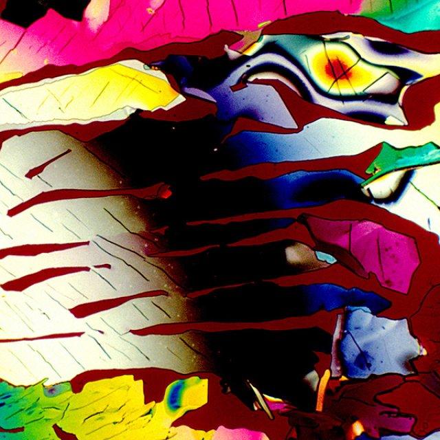 Aburi multicolori: Bauturi alcoolice populare, vazute la microscop - Poza 10