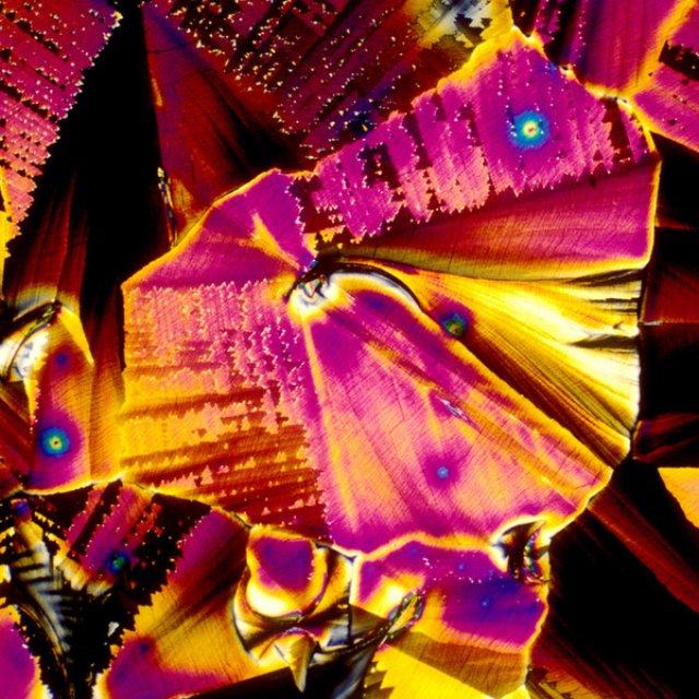 Aburi multicolori: Bauturi alcoolice populare, vazute la microscop - Poza 7