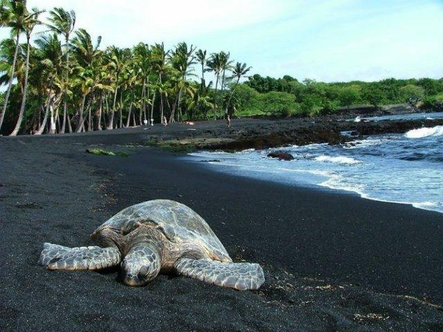 Cele mai ciudate plaje din lume, de o frumusete incredibila - Poza 1