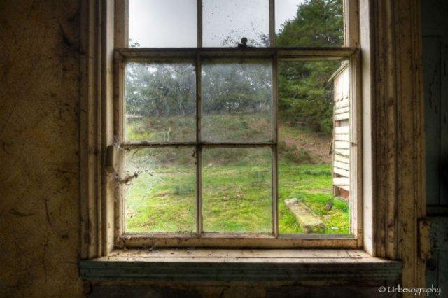 Ferestrele magice: Aduc un aer viu cladirilor abandonate - Poza 11