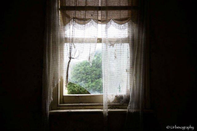 Ferestrele magice: Aduc un aer viu cladirilor abandonate - Poza 12