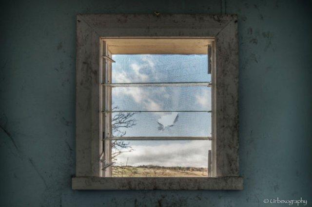 Ferestrele magice: Aduc un aer viu cladirilor abandonate - Poza 10