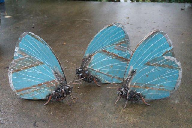 Oximoron artistic: Insecte si pasari metalice, cu John Brown - Poza 1