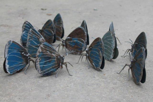 Oximoron artistic: Insecte si pasari metalice, cu John Brown - Poza 4