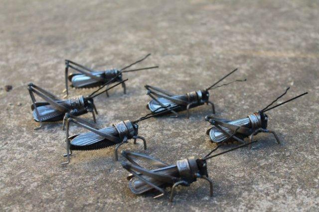 Oximoron artistic: Insecte si pasari metalice, cu John Brown - Poza 5