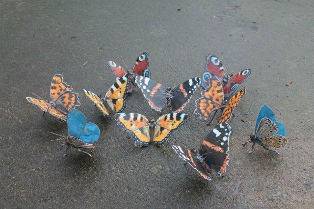 Oximoron artistic: Insecte si pasari metalice, cu John Brown - Poza 6