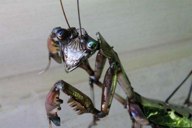 Oximoron artistic: Insecte si pasari metalice, cu John Brown - Poza 7