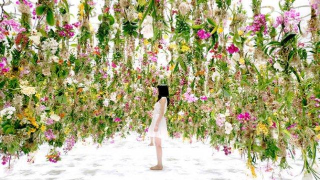 Gradina vegetala plutitoare: Ridica oamenii la inaltimea celor mai frumoase flori