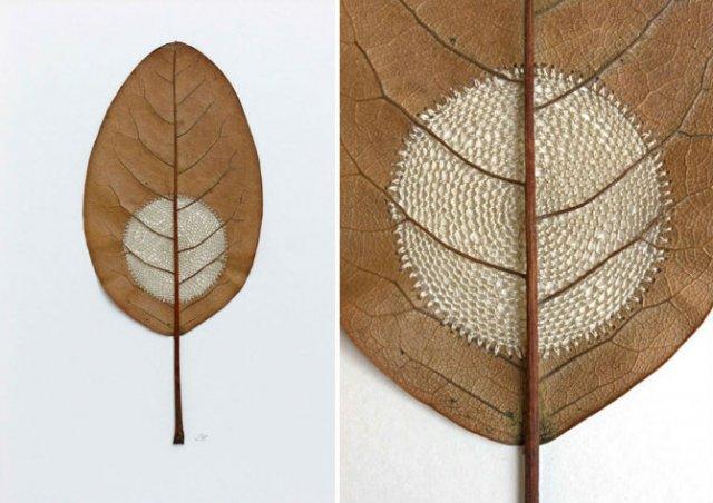 Toamna se impletesc contrastele: Ornamente crosetate in frunze uscate - Poza 5