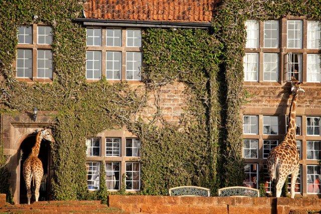Hotelurile anului 2015: Cele mai uluitoare locuri de cazare din lume - Poza 6